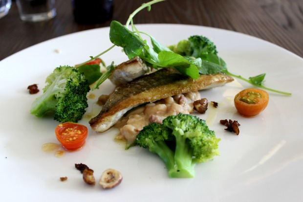fish seafood food auckland restaurant loop