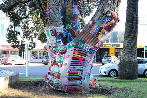 devonport auckland trees knitting