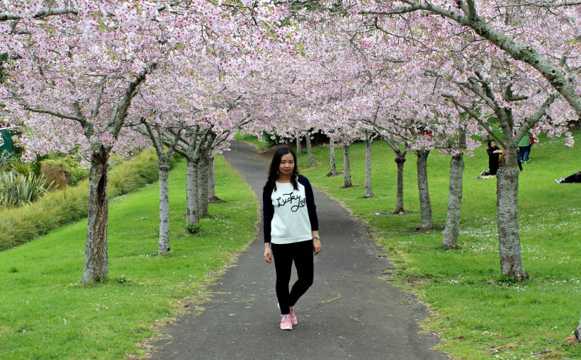 auckland domain ootd cherry blossoms