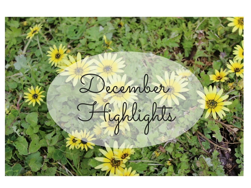 december highlights