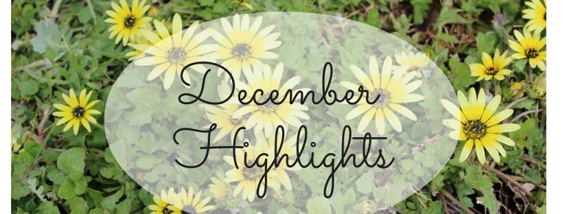 december highlights