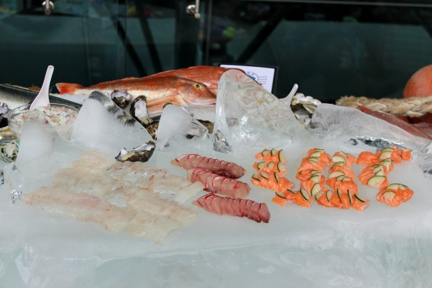 auckland seafood festival food fish sashimi salmon
