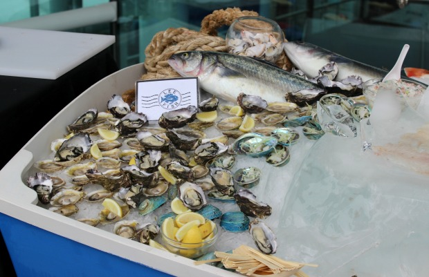 food auckland seafood festival fish oysters