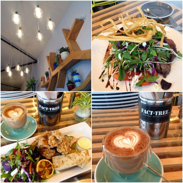 fact-tree cafe