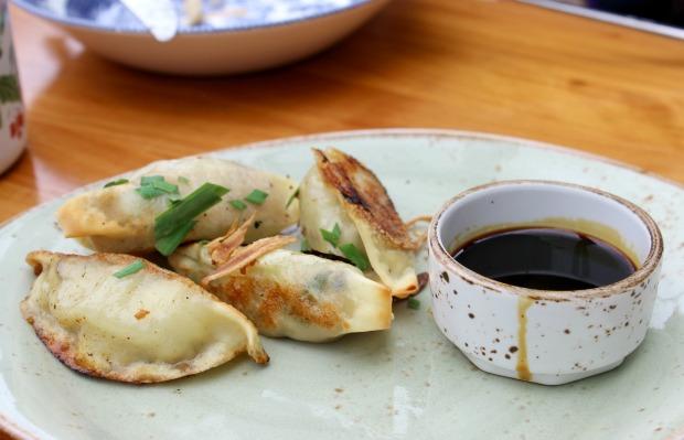 tok tok restaurant dumplings.jpg