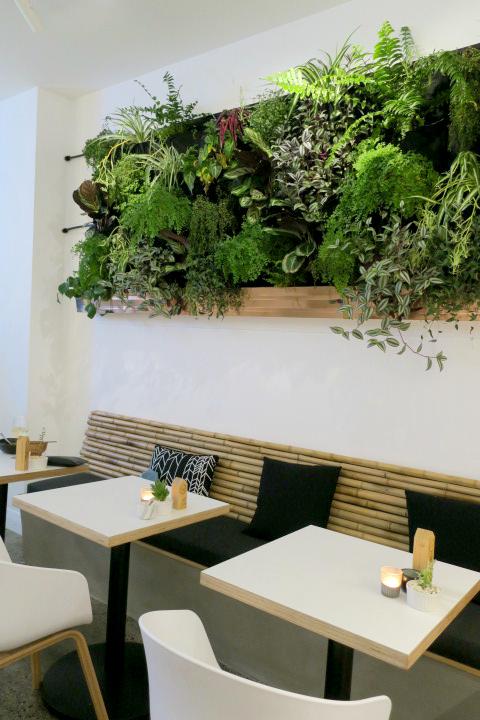 The Kimchi Project Auckland restaurant.jpg