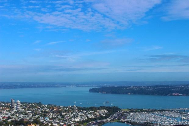 Auckland view.jpg