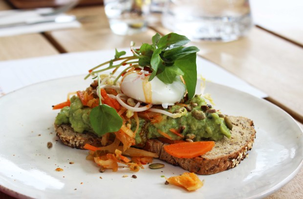 ampersand eatery smashed avocado.jpg