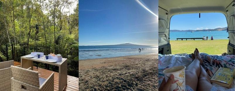 January 2021 NZ